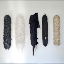 textil-larver